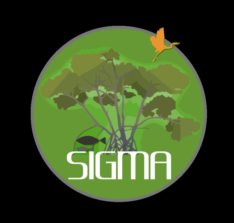 Inicia distribución del Boletín Informativo del Sistema de Información para la Gestión de los Manglares de Colombia-SIGMA